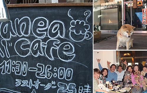 anea cafe(アネアカフェ)