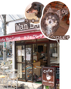 Cafe Wan Love カフェ ワンラブ