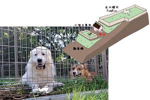 Dog Run 犬庭