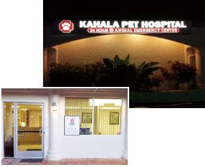 KAHALA PET HOSPITAL