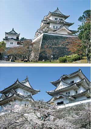 伊賀上野城プ