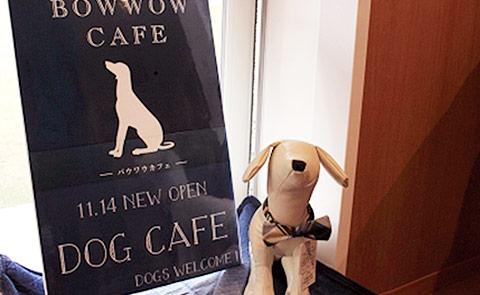 BOWWOW CAFE 2