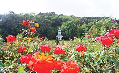 河津バガテル公園2