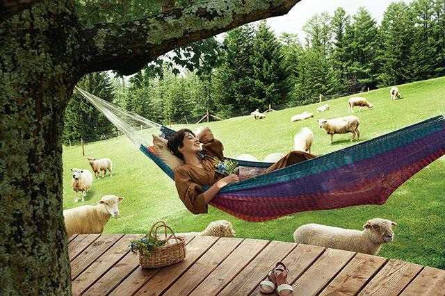 ファームエリア「羊とお昼寝ハンモック」