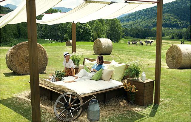 ファームエリア「牧草ベッド」