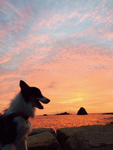 夜は満点の星空、朝は朝焼けに染まる海辺