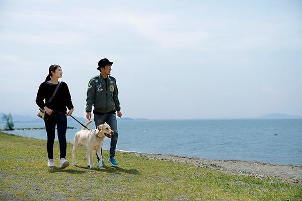 美しい琶湖を眺める自然豊かな公園