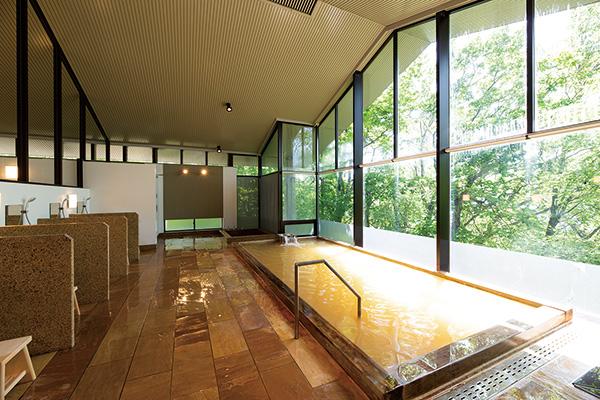 浴槽に檜と石材を使用した温泉