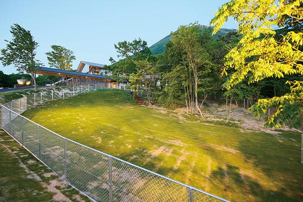 天然芝を敷き詰めたフリースペース